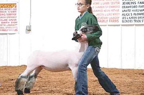 Moss local livestock show highlights