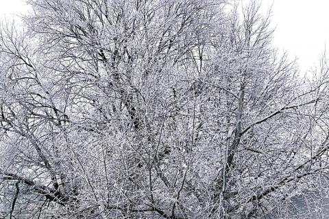 Hughes County a Winter Wonderland ...and more coming!